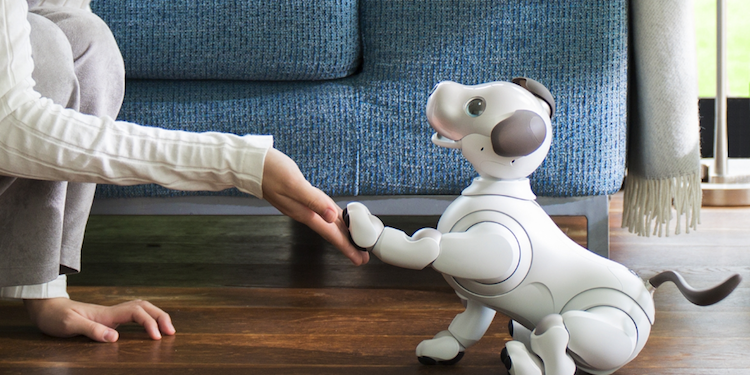 Sony Announces an Updated Edition of Their AIBO Robotic Dog