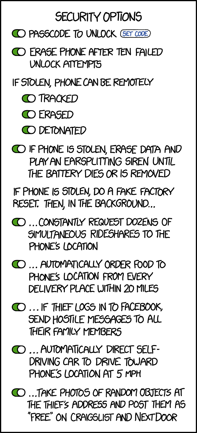 Phone Security Options