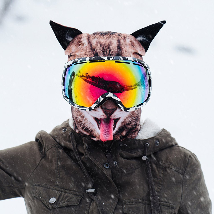 Realistic Animal Face Ski Masks