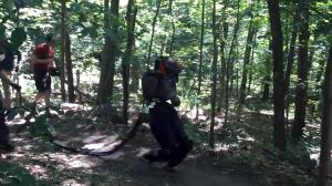 Boston Dynamics Takes Their Atlas Robot on a Brisk Walk Through the Woods