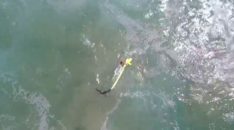Rescue Drone Drops a Lifesaving Flotation Device to Help Two Stranded Swimmers Get Back to Shore