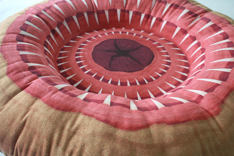 Star Wars Sarlacc Pit Pillow for Newborns and Toddlers