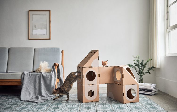 Wonderfully Modular, Interchangeable Cardboard Cat Dwellings Designed by Taiwanese Architects