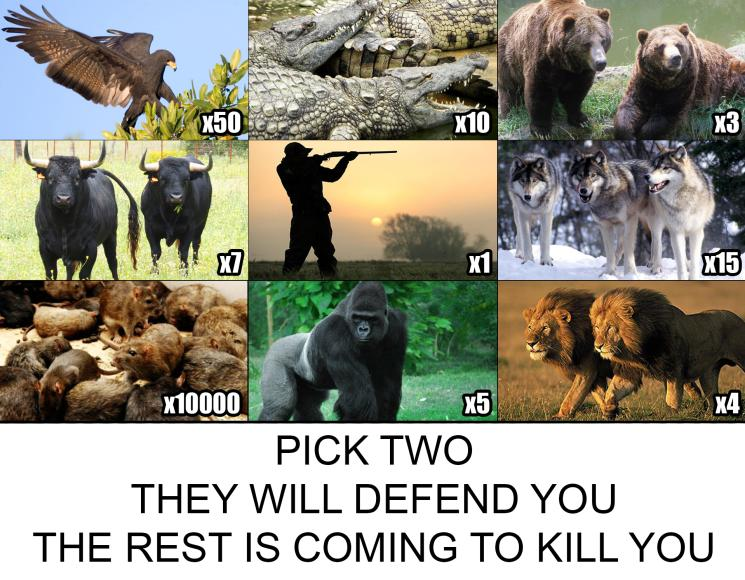 Pick Two Sets of These Animals to Defend You, Because the Rest of Them Are Coming To Kill You