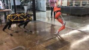 Cassie Bipedal Robot Four Legged Robot