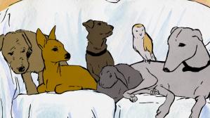 Jasmine the greyhound and family
