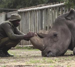 Sudan and Caretaker