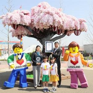 Largest LEGO brick cherry blossom tree