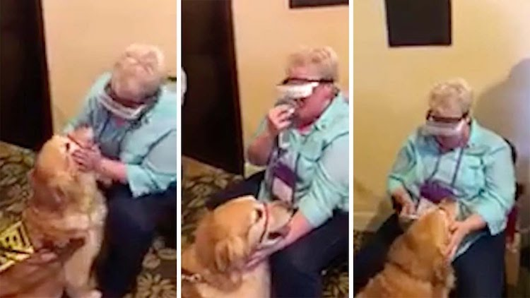 Blind Woman Using eSight Glasses Sees Her Guide Dog For the First Time in Their Eight Years Together