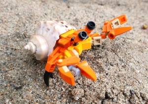 LEGO Hermit Crab With a Real Shell
