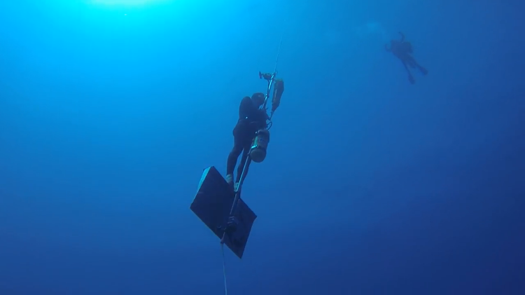 William Winram Freediving