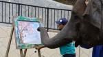 Yumeka Painting Elephant