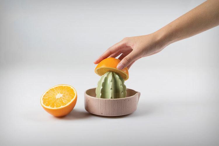 A Succulent Citrus Juicer Shaped Like a Cactus