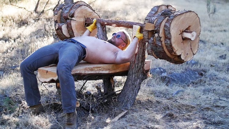 Building a Bench Press Out of a Tree