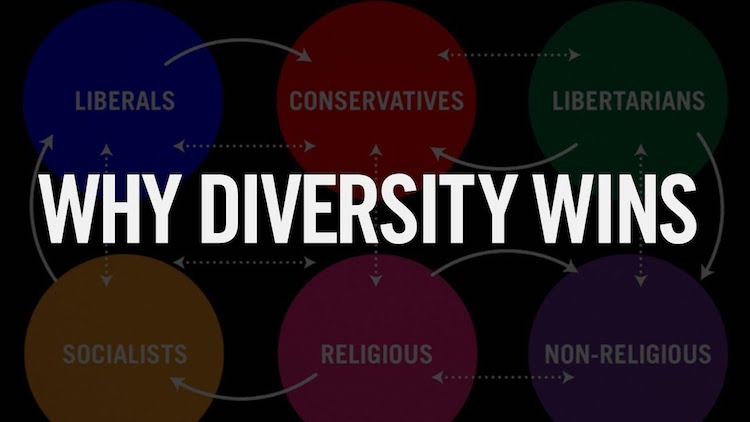 An Excellent Explanation Showing How Diversity of Thought Can Solve the Most Complex of Problems