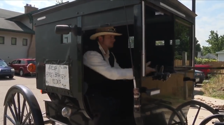 Michigan Man Starts an Amish Version of Uber With an On-Call Horse