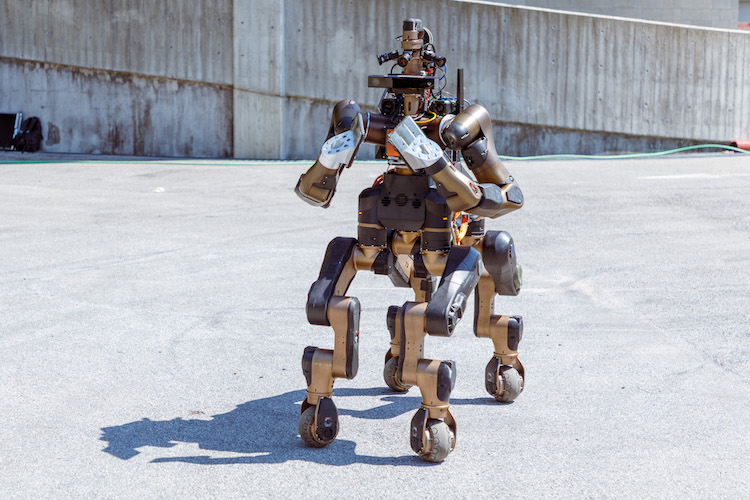 The Centauro, A Sturdy Search and Rescue Robot With an Anthropomorphic Body That Can Cut Wood