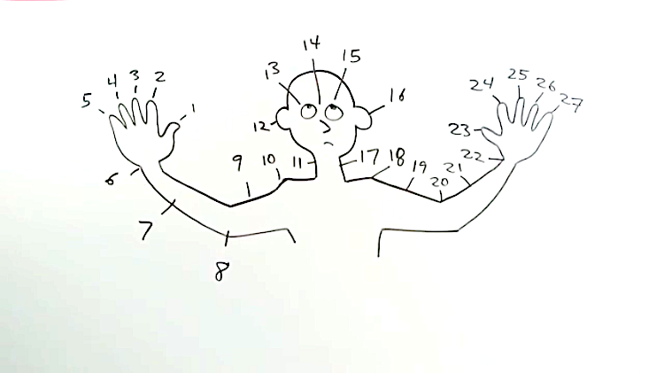 Number Body Words