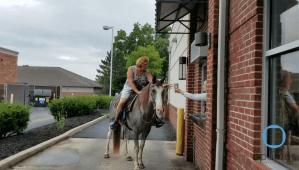 Riding Horse Through Starbucks Drive-Thru