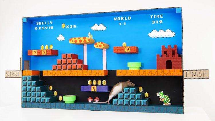 Super Mario Rat Maze