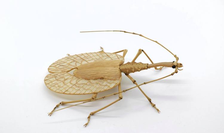Highly Detailed Realistic Insects Crafted Out of Bamboo