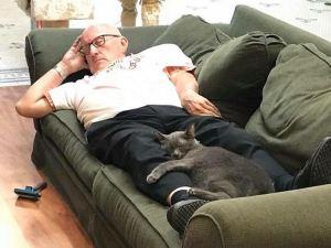 Cat Grandpa Gray Kitty