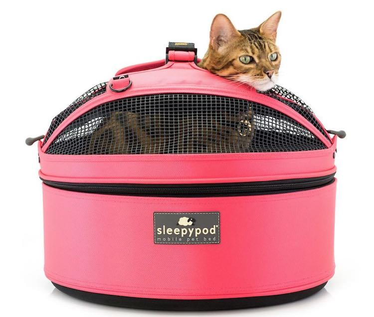 A Cleverly Designed Soft Pet Carrier That Easily Transforms Into a Car Safety Seat or a Comfy Bed