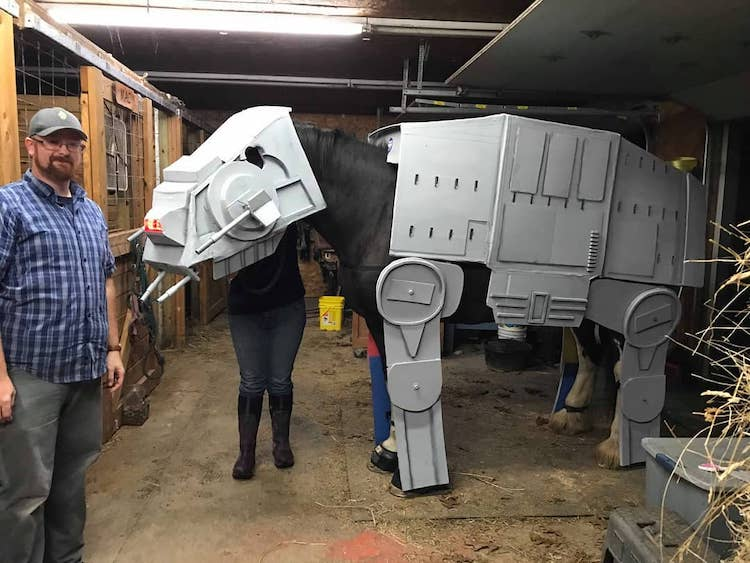 Creative Cosplayer Builds Incredible Star Wars AT-AT Costume for His Wonderfully Tolerant Horse