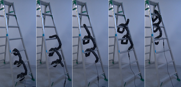 Ladder Climbing with a Snake Robot