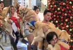 Dogs Ride Down Escalator