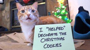 Cole Marmalade Cookies Shaming