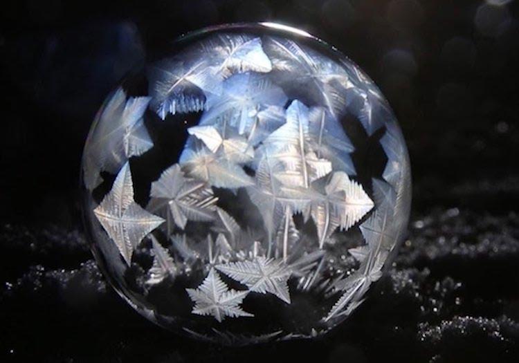 Frozen Snow Bubble