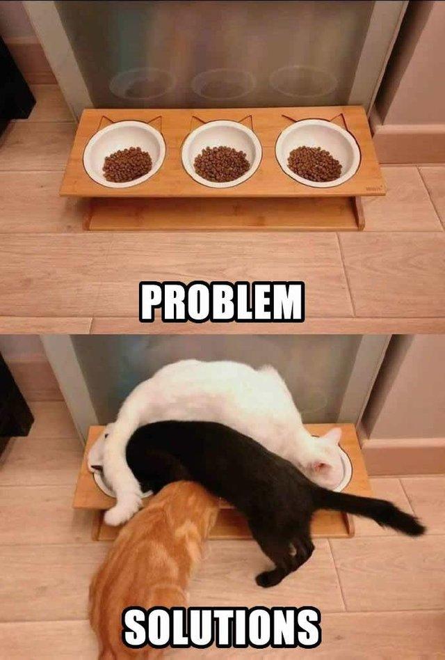 Problem Solutions