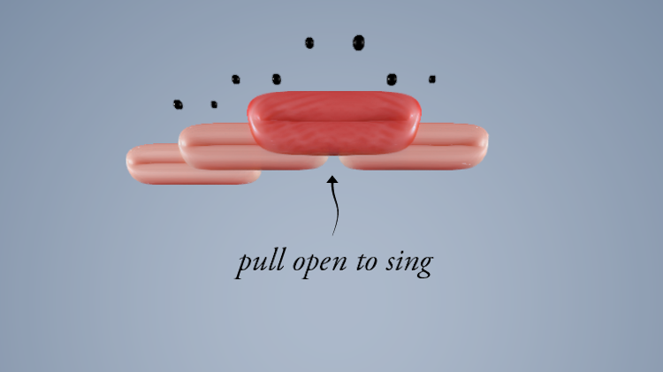 Pull Open to Sing