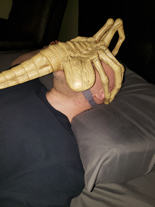 https://laughingsquid.com/wp-content/uploads/2019/01/Alien-Facehugger-CPAP-Mask.jpg