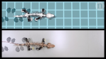 Bringing a fossil to life_ Reverse engineering locomotion