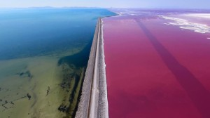 Colors of the Great Salt Lake Drone
