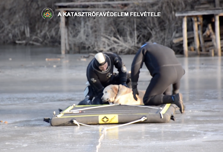 Hungarian Firefighters Use Inflatable Slide to Rescue Stranded Dog Frozen Lake
