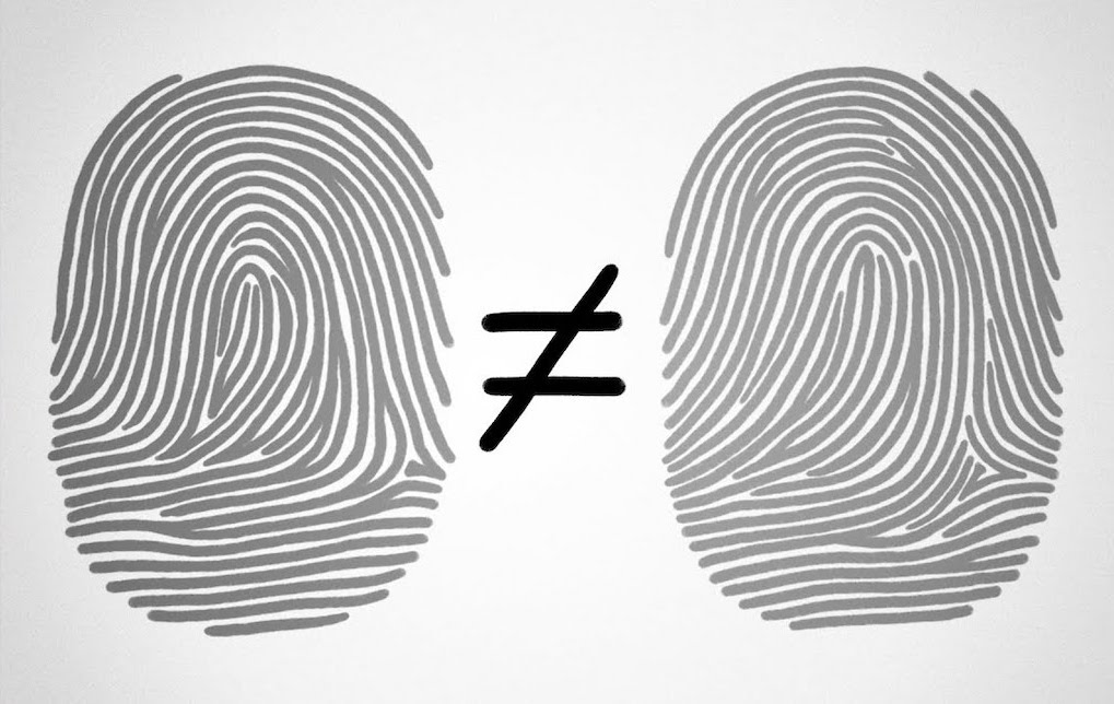 The In Utero Chaos That Makes Fingerprints So Unique
