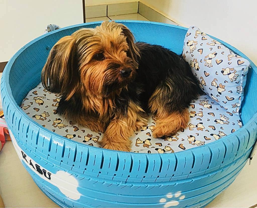 Repurposed Tires Pet Beds
