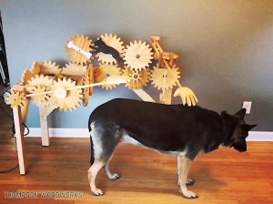 Rube Goldberg Automatic Dog Petter