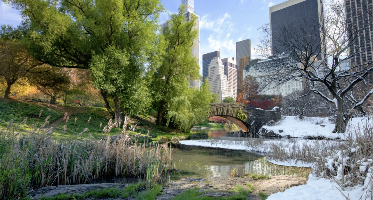 A Stunning HD Timelapse That Captures Two Years of Changing Seasons in New York City's Central Park