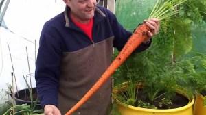 Enormous Carrot Dan Dirt Barrel