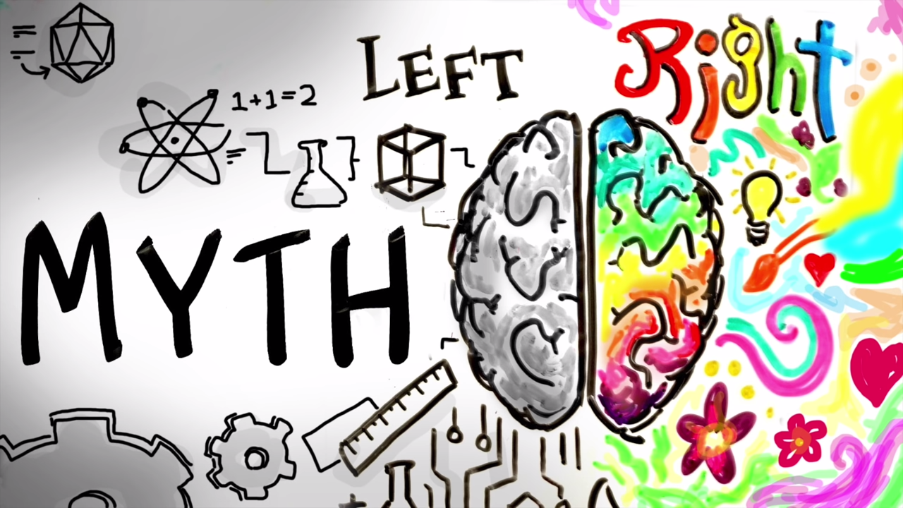 The Myth of the Left Brain Right Brain Theory Explained