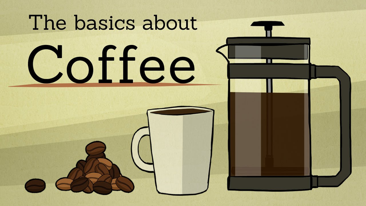An Animated Guide to Making a Basic Cup of Coffee