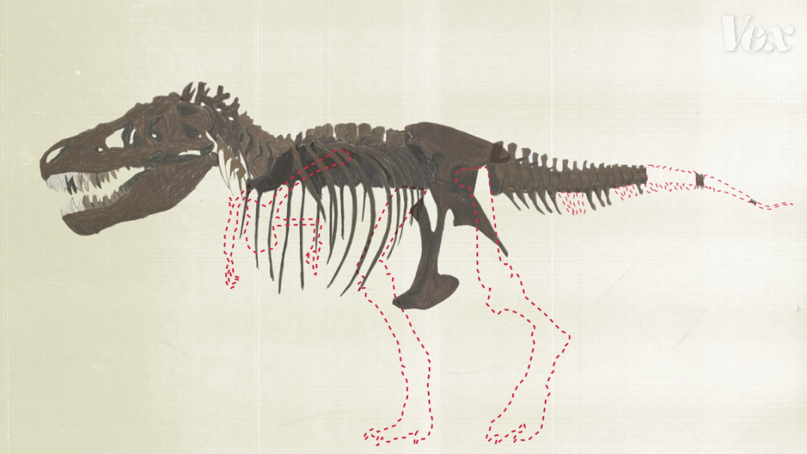 How Paleontologists Are Able to Accurately Fill in What's Missing In Found Dinosaur Bone Reconstruction