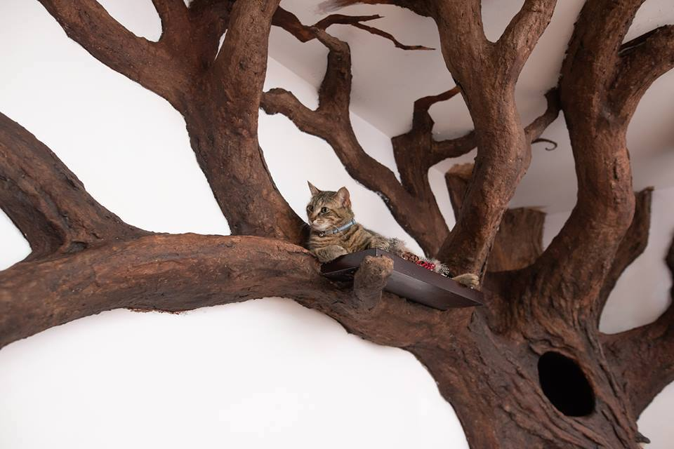 An Incredibly Realistic Long-Limbed Indoor Cat Tree