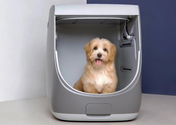 Handy All-in-One Indoor Dog Shower and Blow Dry Unit