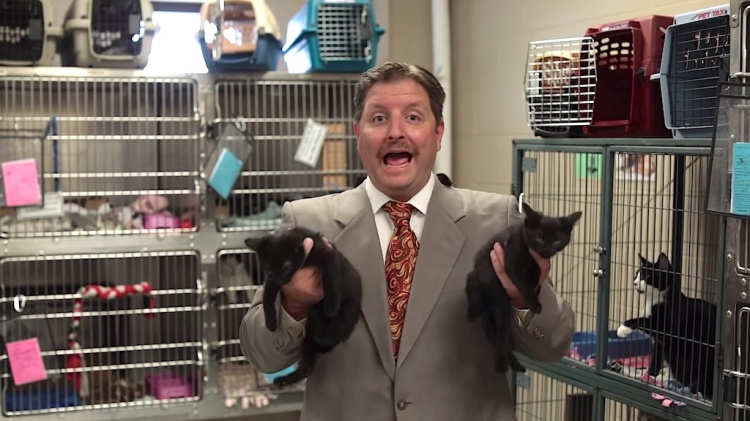 Cat Adoption Salesman