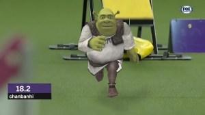 Shrek Running Westminster Agility Course